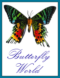 [Butterfly World Logo]