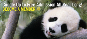 San diego zoo coupons for members