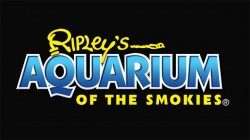 [Ripley's Aquarium of the Smokies Logo]