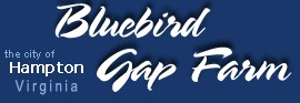 [Bluebird Gap Farm Logo]